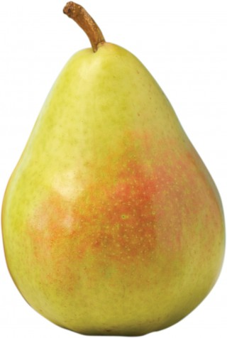 Corella Pear