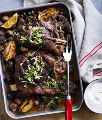 Mushroom Ragu with Slow Cooked Lamb
