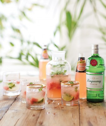 Tanquary Gin cocktail with Schweppes Agrum