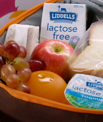 The Ultimate Kids Lunchbox - Chicken Sandwiches