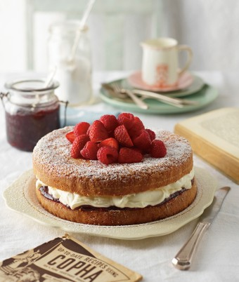 Jam and Cream Victorian Tea Cake