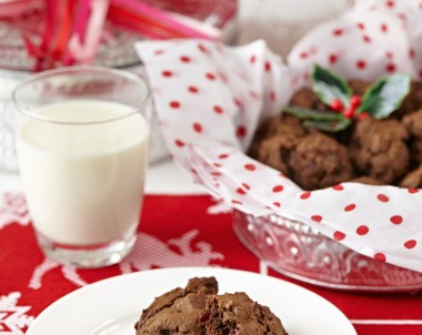 Chocolate and Cranberry Christmas Cookie recipe