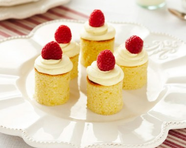 Tiny White Chocolate and Raspberry Mudcakes