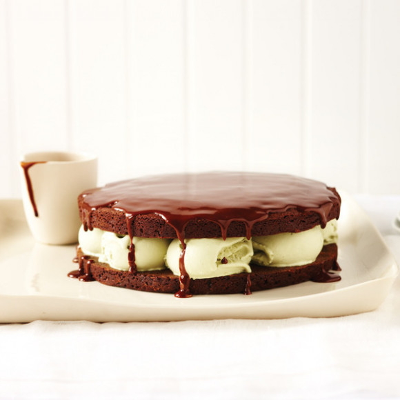 Chocolate and Pistachio Ice Cream Cake with Hot Chocolate Sauce